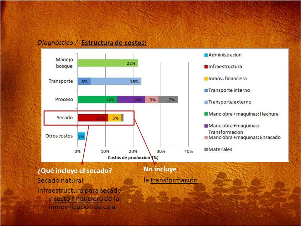 Diagnóstico / Estructura de costos: ¿Qué incluye el secado? Secado natural Infraestructura para secado y costo financiero de la inmovilización de caja