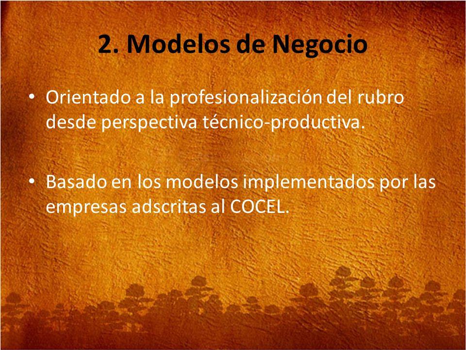 2. Modelos de Negocio Orientado a la profesionalización del rubro desde perspectiva técnico-productiva. Basado en los modelos implementados por las em