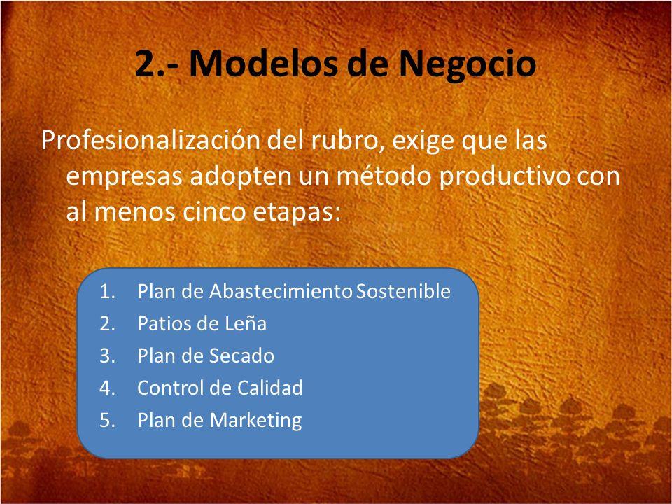 2.- Modelos de Negocio Profesionalización del rubro, exige que las empresas adopten un método productivo con al menos cinco etapas: 1.Plan de Abasteci