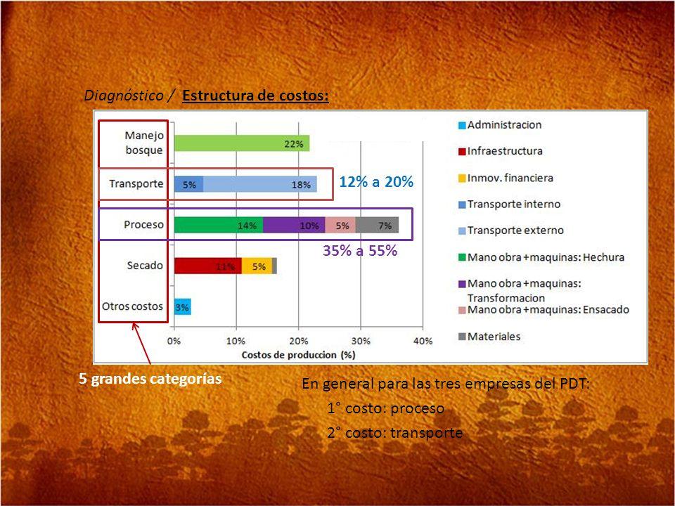 Diagnóstico / Estructura de costos: En general para las tres empresas del PDT: 1° costo: proceso 2° costo: transporte 5 grandes categorías 12% a 20% 3