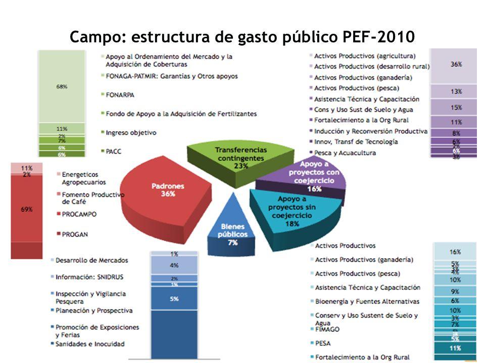 Campo: estructura de gasto público PEF-2010