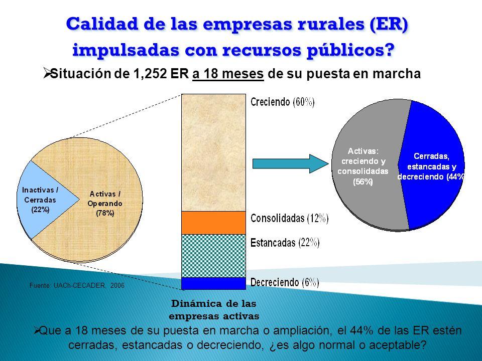 Calidad de las empresas rurales (ER) impulsadas con recursos públicos.