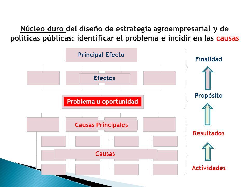 Principal Efecto Finalidad Propósito Resultados Actividades Efectos Problema u oportunidad Causas Principales Causas