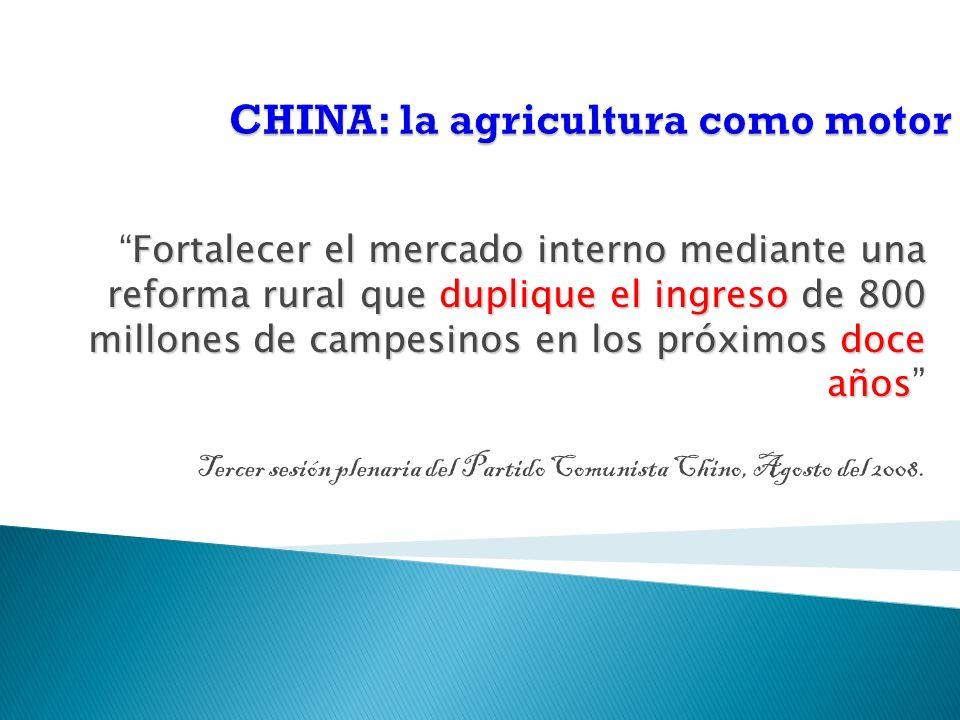 Fortalecer el mercado interno mediante una reforma rural que duplique el ingreso de 800 millones de campesinos en los próximos doce años Tercer sesión plenaria del Partido Comunista Chino, Agosto del 2008.