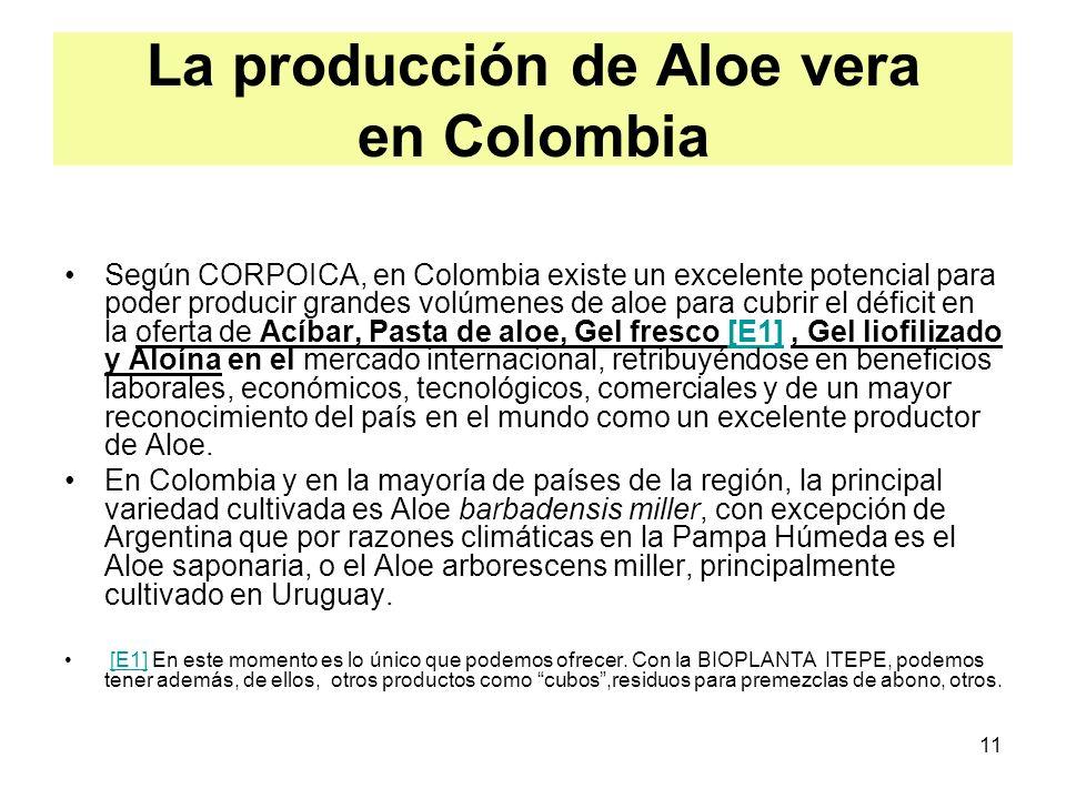 11 La producción de Aloe vera en Colombia Según CORPOICA, en Colombia existe un excelente potencial para poder producir grandes volúmenes de aloe para