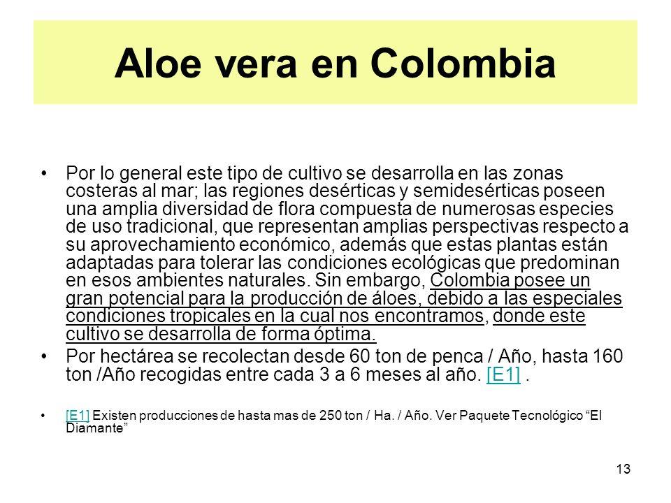 13 Aloe vera en Colombia Por lo general este tipo de cultivo se desarrolla en las zonas costeras al mar; las regiones desérticas y semidesérticas pose