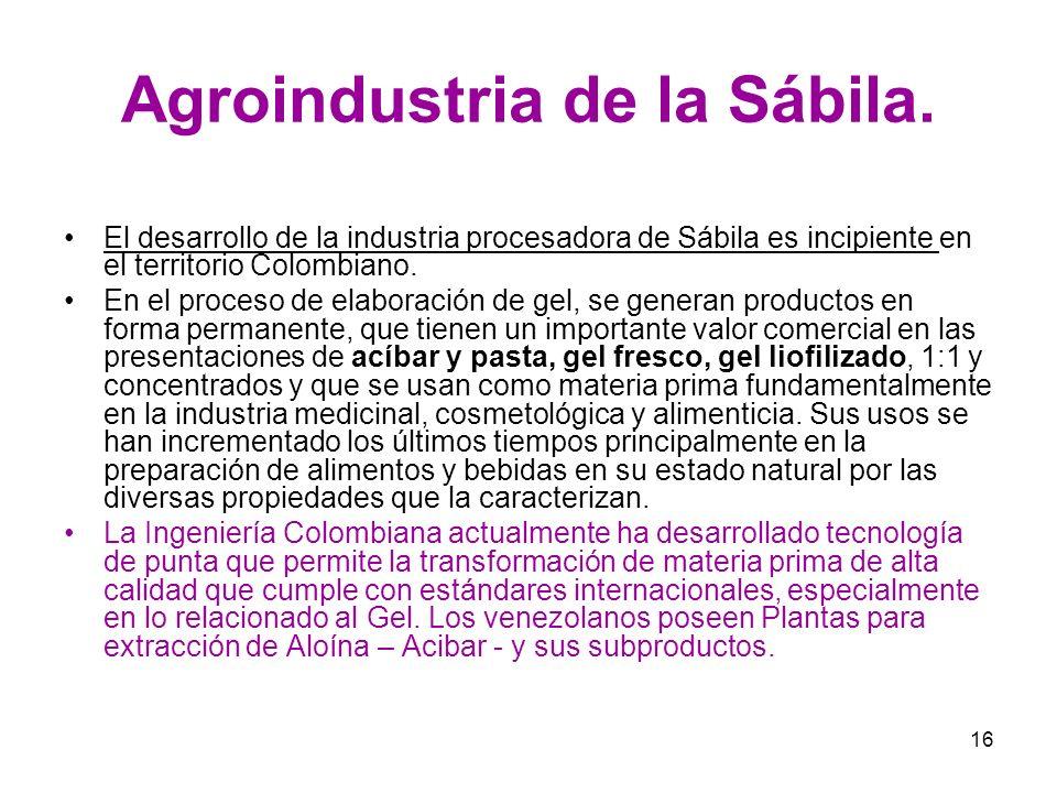 16 Agroindustria de la Sábila. El desarrollo de la industria procesadora de Sábila es incipiente en el territorio Colombiano. En el proceso de elabora