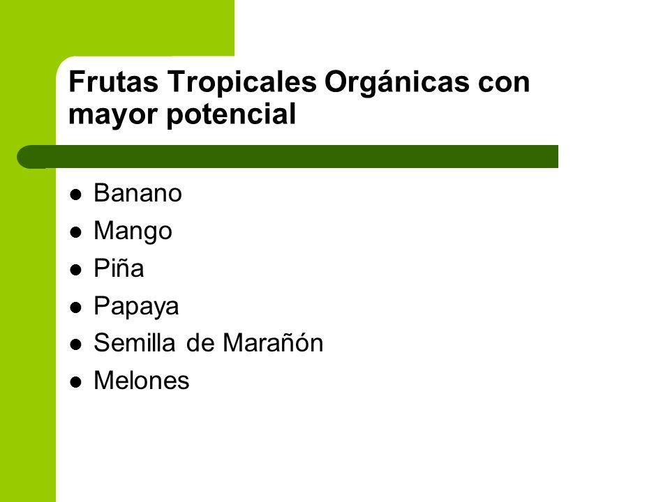 Frutas Tropicales Orgánicas con mayor potencial Banano Mango Piña Papaya Semilla de Marañón Melones