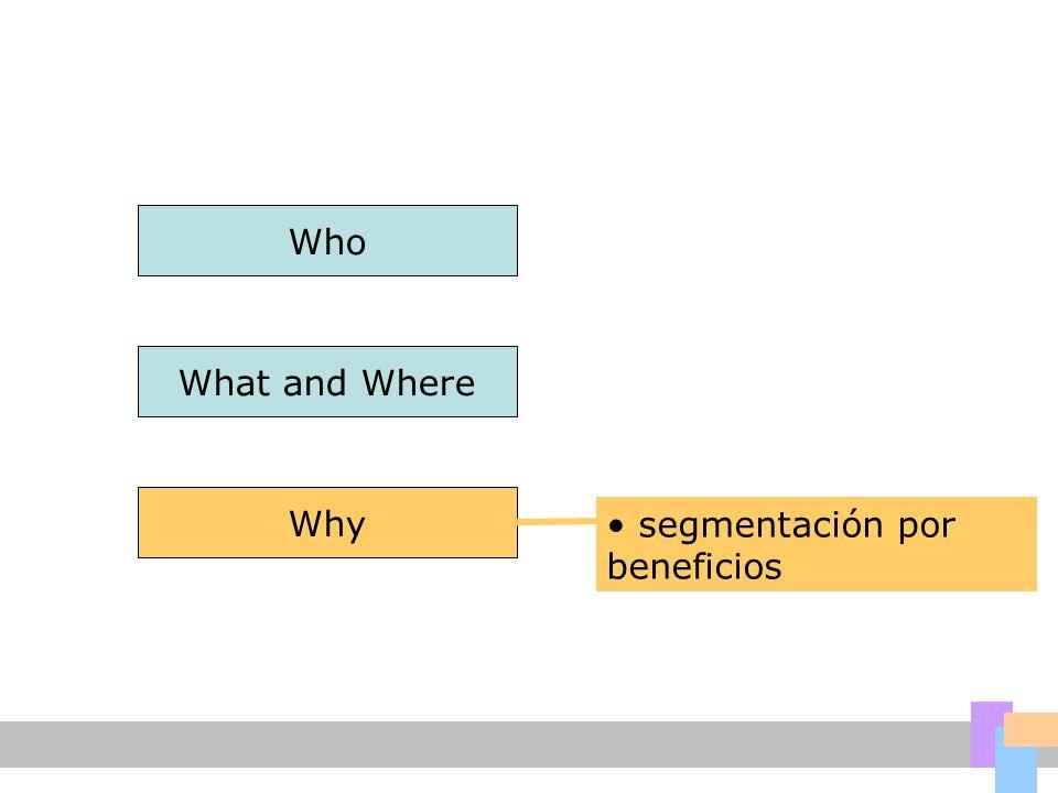 Who What and Where Why segmentación por beneficios