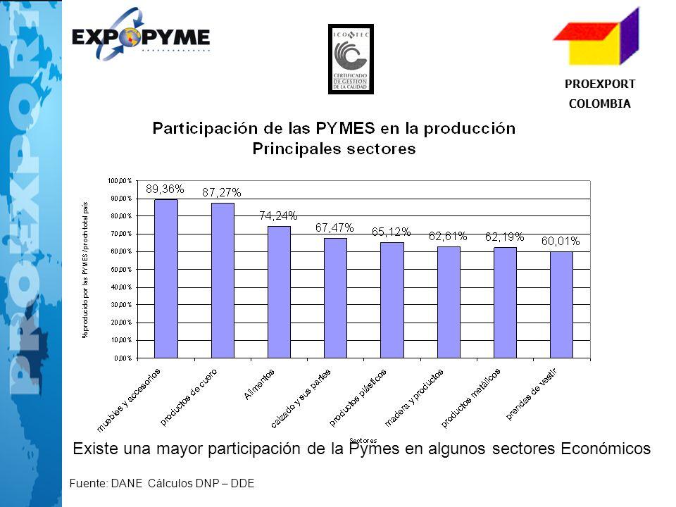 PROEXPORT COLOMBIA Existe una mayor participación de la Pymes en algunos sectores Económicos Fuente: DANE Cálculos DNP – DDE