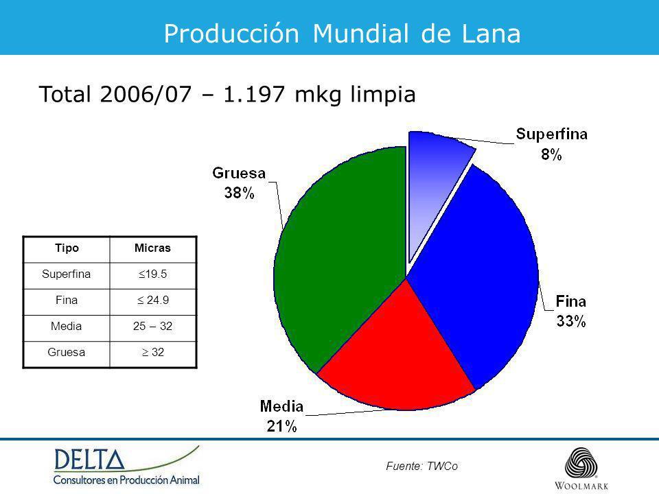 1990 1992 mkg 2007 1197 mkg Producción Mundial de Lana (base limpia) - 40% Fuente: TWCo