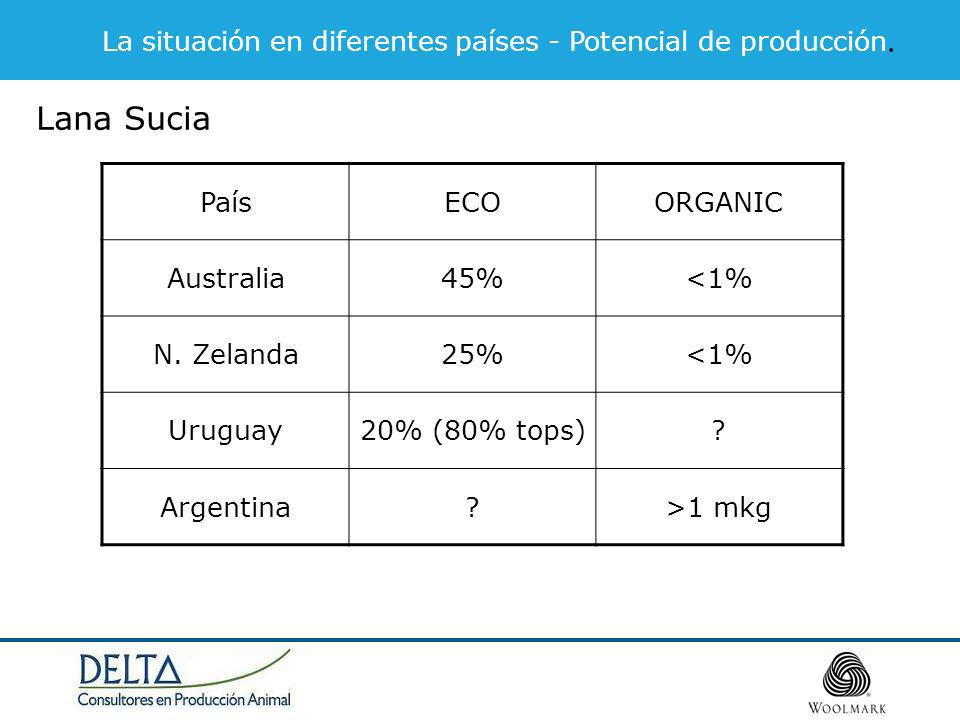 La situación en diferentes países - Potencial de producción. Lana Sucia PaísECOORGANIC Australia45%<1% N. Zelanda25%<1% Uruguay20% (80% tops)? Argenti