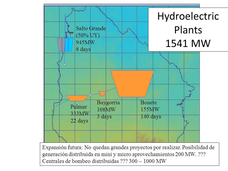 Hydroelectric Plants 1541 MW Bonete 155MW 140 days Baygorria 108MW 3 days Palmar 333MW 22 days Salto Grande (50% UY) 945MW 8 days Expansión futura: No