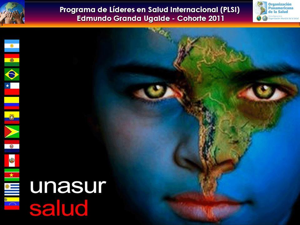 Programa de Líderes en Salud Internacional (PLSI) Edmundo Granda Ugalde - Cohorte 2011