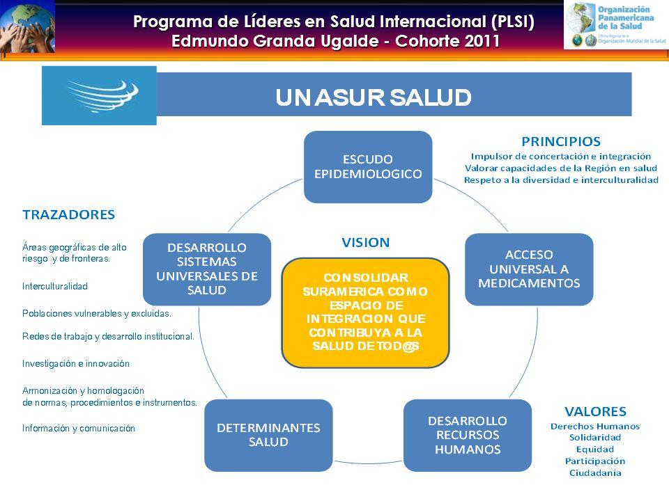 Programa de Líderes en Salud Internacional (PLSI) Edmundo Granda Ugalde - Cohorte 2011 PLAN QUINQUENAL - AVANCES