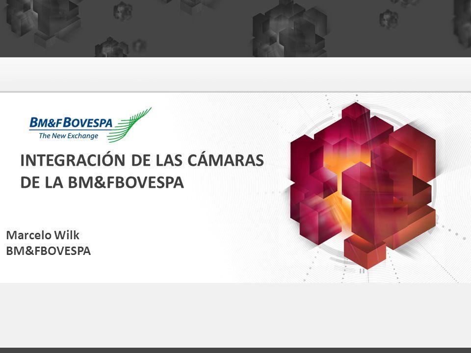 INTEGRACIÓN DE LAS CÁMARAS DE LA BM&FBOVESPA Marcelo Wilk BM&FBOVESPA