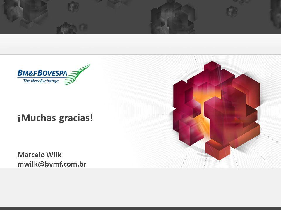 ¡Muchas gracias! Marcelo Wilk mwilk@bvmf.com.br