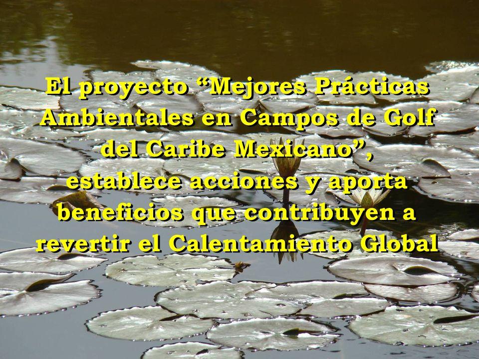 El proyecto Mejores Prácticas Ambientales en Campos de Golf del Caribe Mexicano, establece acciones y aporta beneficios que contribuyen a revertir el