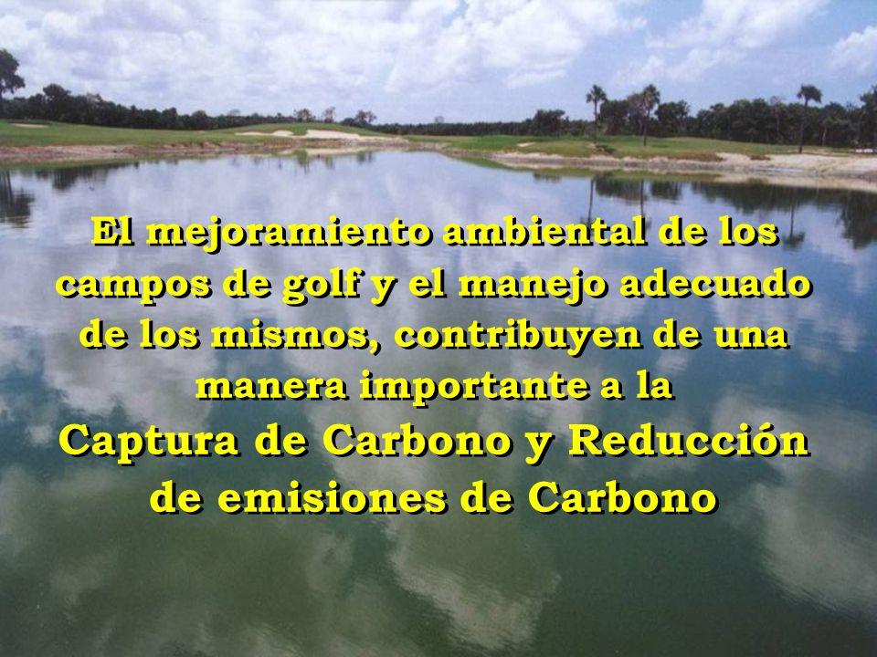 El mejoramiento ambiental de los campos de golf y el manejo adecuado de los mismos, contribuyen de una manera importante a la Captura de Carbono y Red