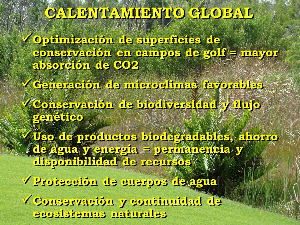 CALENTAMIENTO GLOBAL Optimización de superficies de conservación en campos de golf = mayor absorción de CO2 Generación de microclimas favorables Conse
