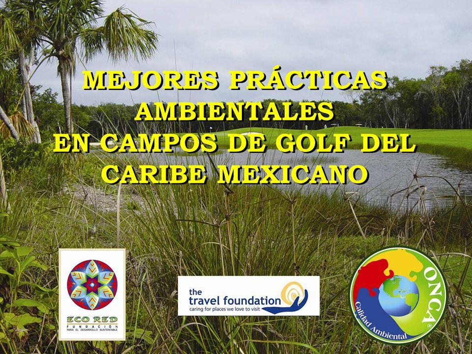 MEJORES PRÁCTICAS AMBIENTALES EN CAMPOS DE GOLF DEL CARIBE MEXICANO MEJORES PRÁCTICAS AMBIENTALES EN CAMPOS DE GOLF DEL CARIBE MEXICANO