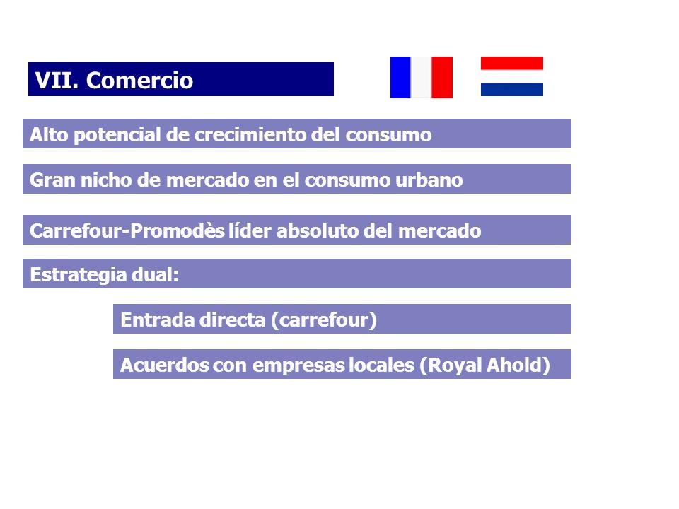VII. Comercio Alto potencial de crecimiento del consumo Estrategia dual: Entrada directa (carrefour) Acuerdos con empresas locales (Royal Ahold) Carre
