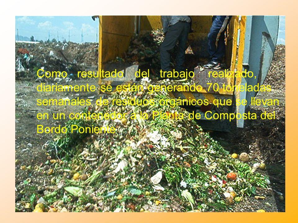 Como resultado del trabajo realizado, diariamente se están generando 70 toneladas semanales de residuos orgánicos que se llevan en un contenedor a la