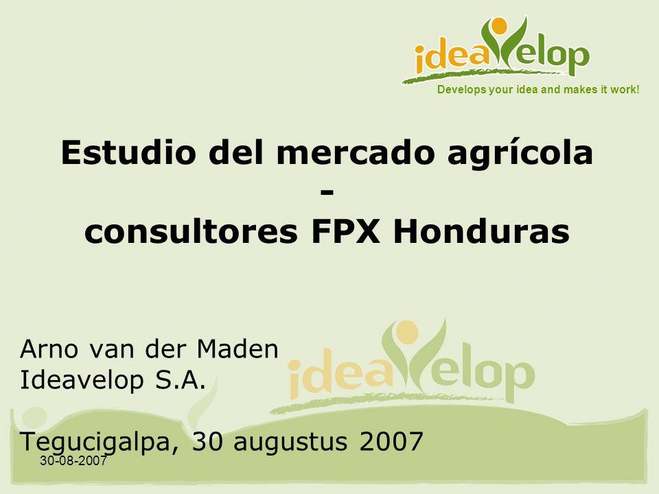 30-08-2007 Estudio del mercado agrícola - consultores FPX Honduras Arno van der Maden Ideavelop S.A.