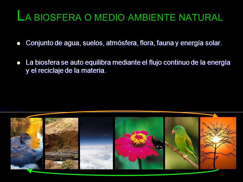 L A BIOSFERA O MEDIO AMBIENTE NATURAL Conjunto de agua, suelos, atmósfera, flora, fauna y energía solar. Conjunto de agua, suelos, atmósfera, flora, f