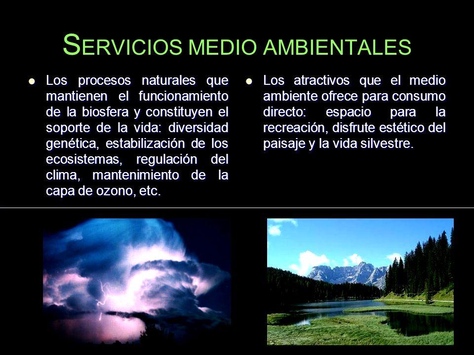 S ERVICIOS MEDIO AMBIENTALES Los procesos naturales que mantienen el funcionamiento de la biosfera y constituyen el soporte de la vida: diversidad gen