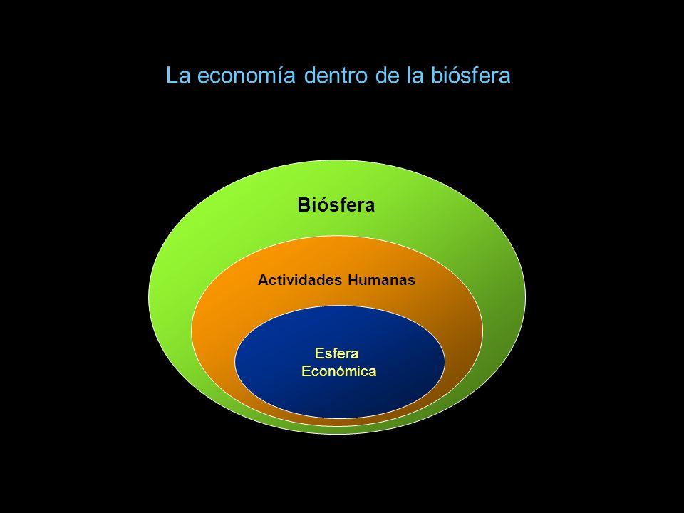 LA ECONOMIA EN TÉRMINOS ENERGÉTICOS La desestructuración de la materia y la energía, que produce toda actividad económica, obliga a tener responsabilidad intergeneracional.