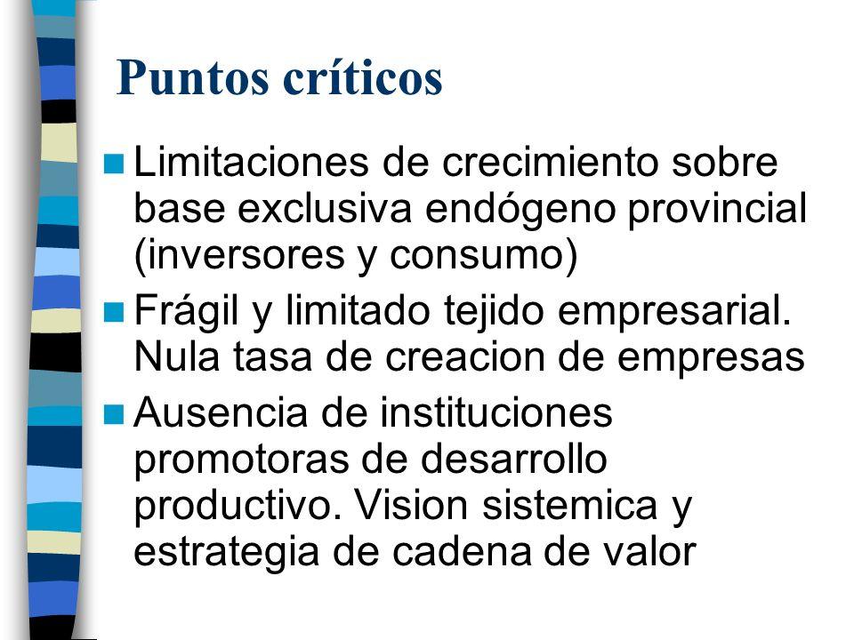 Puntos críticos Limitaciones de crecimiento sobre base exclusiva endógeno provincial (inversores y consumo) Frágil y limitado tejido empresarial.