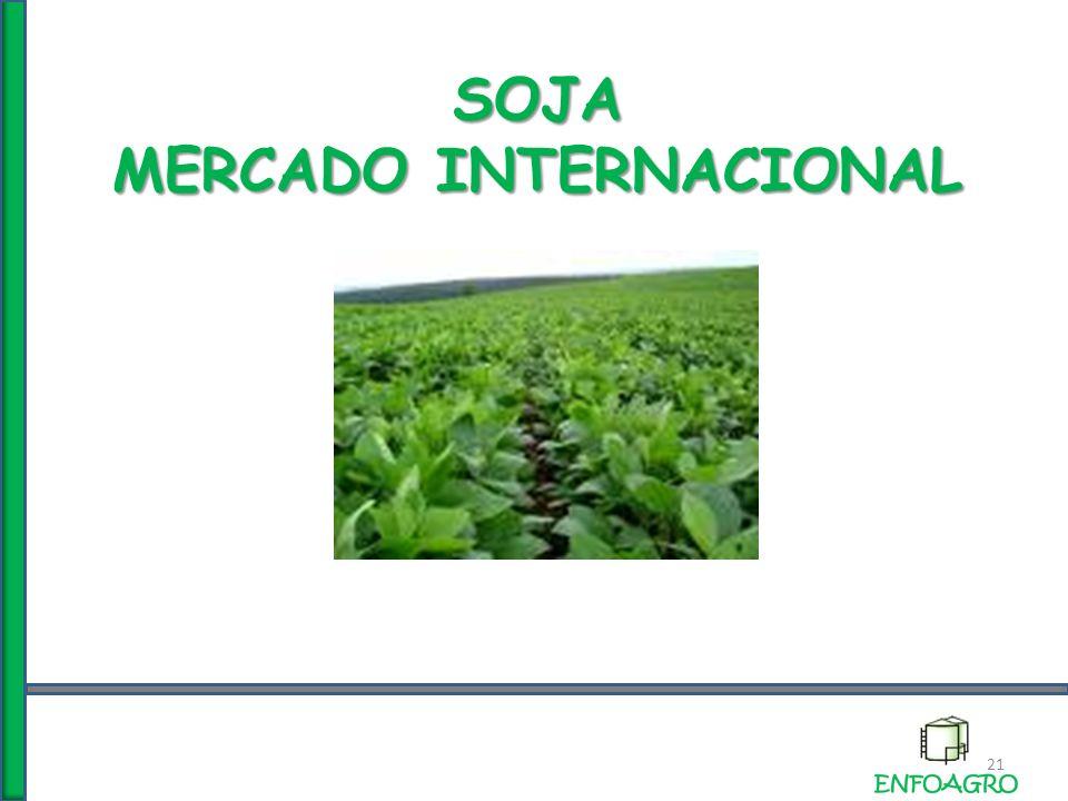 SOJA MERCADO INTERNACIONAL 21