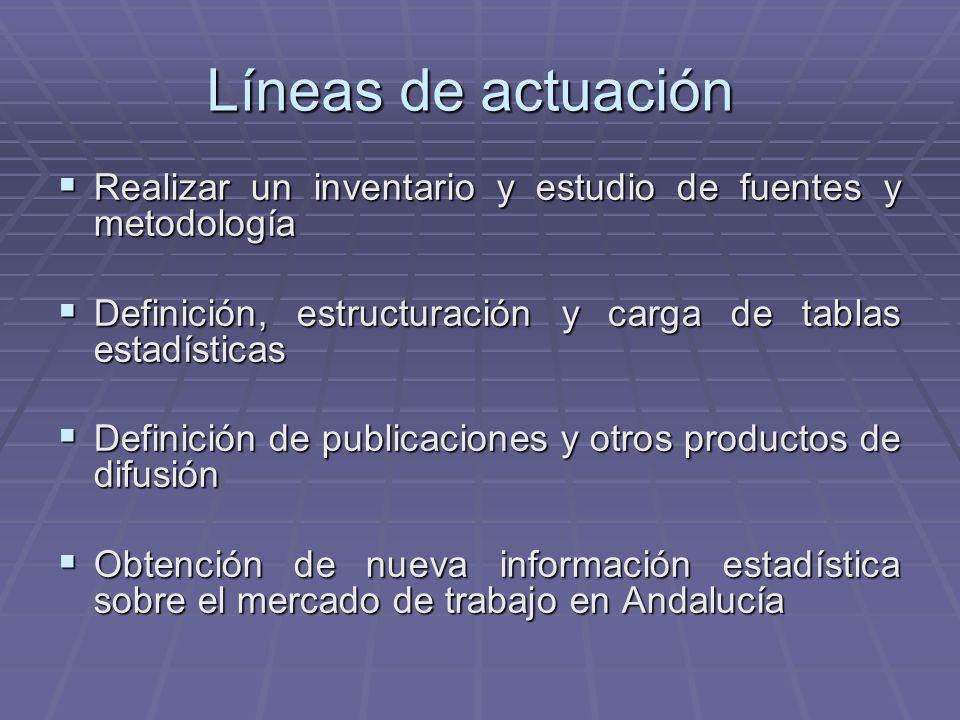 Líneas de actuación Realizar un inventario y estudio de fuentes y metodología Realizar un inventario y estudio de fuentes y metodología Definición, es