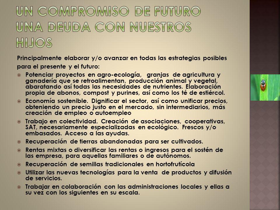 Principalmente elaborar y/o avanzar en todas las estrategias posibles para el presente y el futuro: Potenciar proyectos en agro-ecología, granjas de a