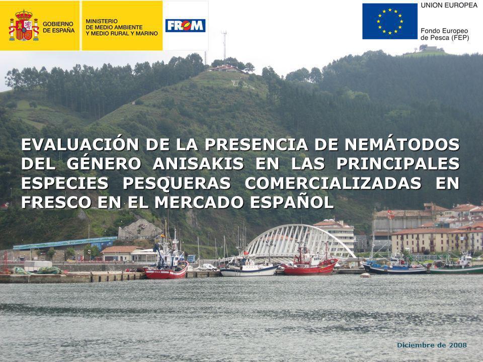 EVALUACIÓN DE LA PRESENCIA DE NEMÁTODOS DEL GÉNERO ANISAKIS EN LAS PRINCIPALES ESPECIES PESQUERAS COMERCIALIZADAS EN FRESCO EN EL MERCADO ESPAÑOL Diciembre de 2008