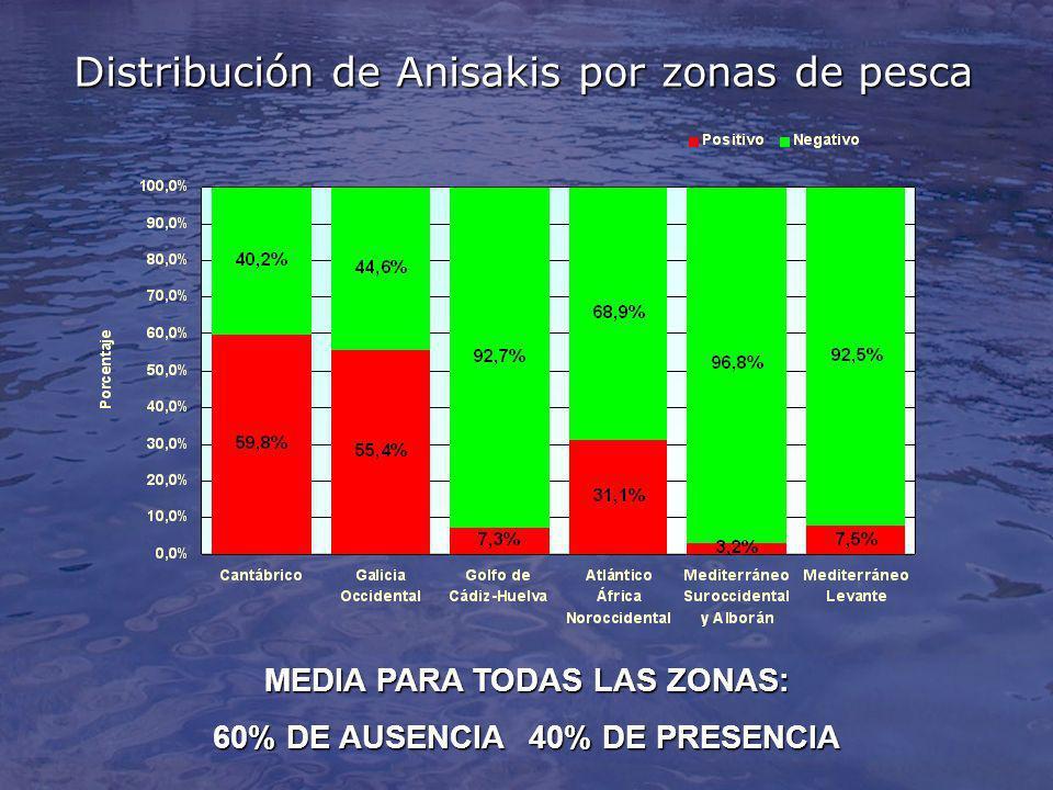 Distribución de Anisakis por zonas de pesca MEDIA PARA TODAS LAS ZONAS: 60% DE AUSENCIA40% DE PRESENCIA