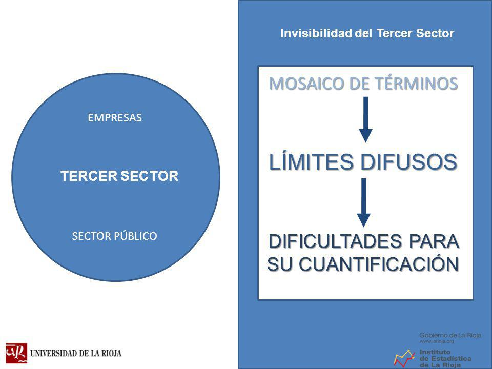 EMPRESAS SECTOR PÚBLICO MOSAICO DE TÉRMINOS LÍMITESDIFUSOS LÍMITES DIFUSOS DIFICULTADES PARA SU CUANTIFICACIÓN TERCER SECTOR Invisibilidad del Tercer Sector