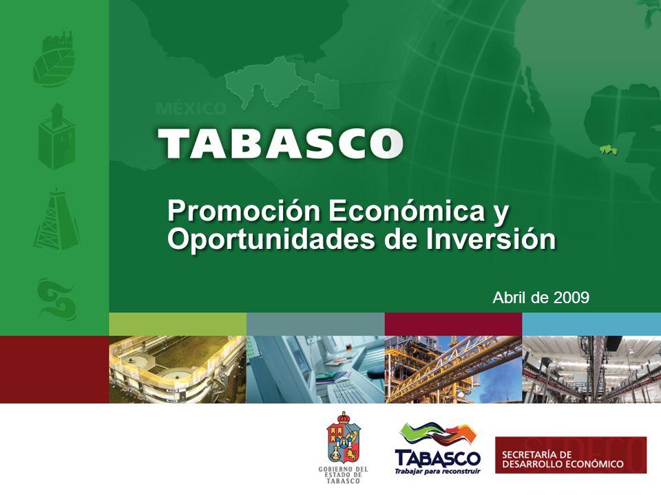 Abril de 2009 Promoción Económica y Oportunidades de Inversión