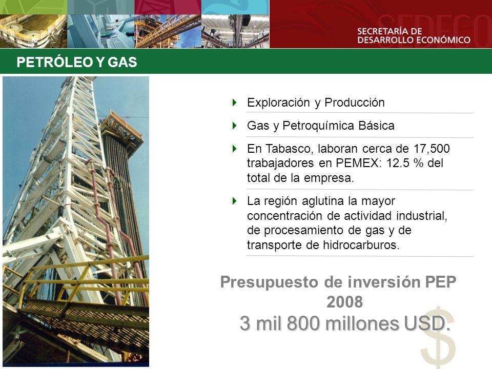 Exploración y Producción Gas y Petroquímica Básica En Tabasco, laboran cerca de 17,500 trabajadores en PEMEX: 12.5 % del total de la empresa. La regió