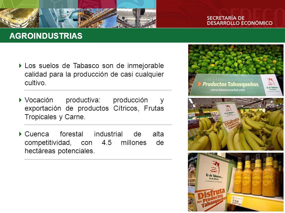 Los suelos de Tabasco son de inmejorable calidad para la producción de casi cualquier cultivo. Vocación productiva: producción y exportación de produc