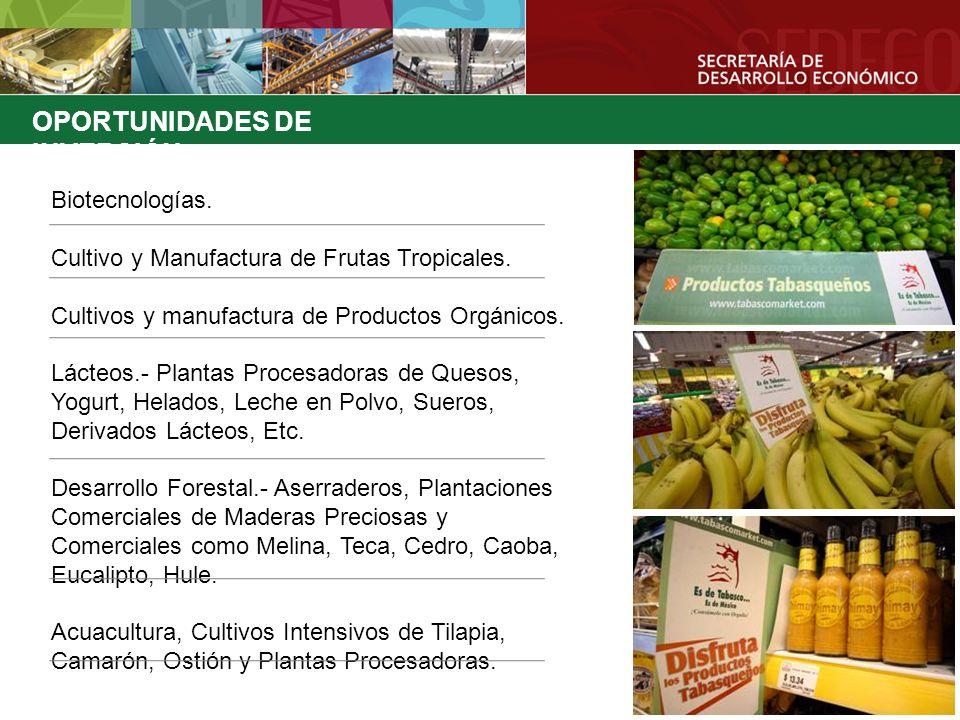 OPORTUNIDADES DE INVERSIÓN Biotecnologías. Cultivo y Manufactura de Frutas Tropicales. Cultivos y manufactura de Productos Orgánicos. Lácteos.- Planta