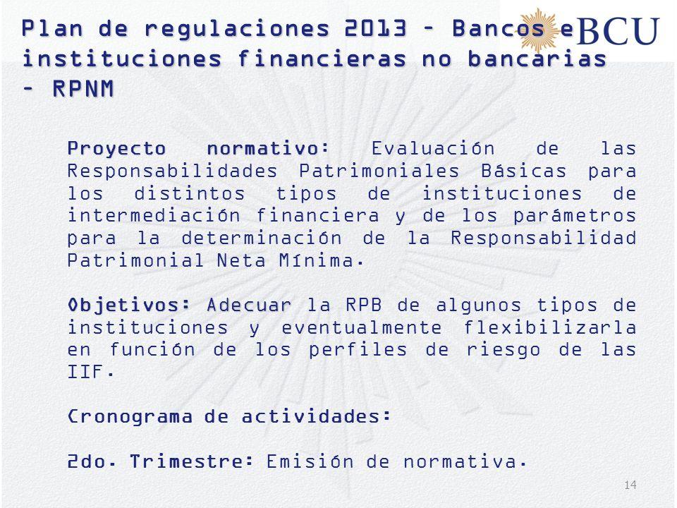 14 Plan de regulaciones 2013 – Bancos e instituciones financieras no bancarias – RPNM Proyecto normativo Proyecto normativo: Evaluación de las Respons