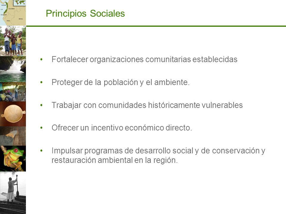 Principios Sociales Fortalecer organizaciones comunitarias establecidas Proteger de la población y el ambiente. Trabajar con comunidades históricament