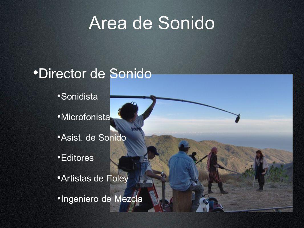 Area de Sonido Director de Sonido Sonidista Microfonista Asist. de Sonido Editores Artistas de Foley Ingeniero de Mezcla