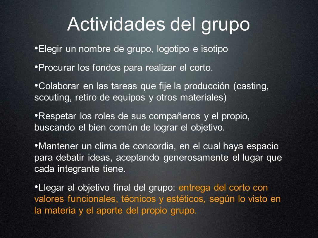 Actividades del grupo Elegir un nombre de grupo, logotipo e isotipo Procurar los fondos para realizar el corto. Colaborar en las tareas que fije la pr