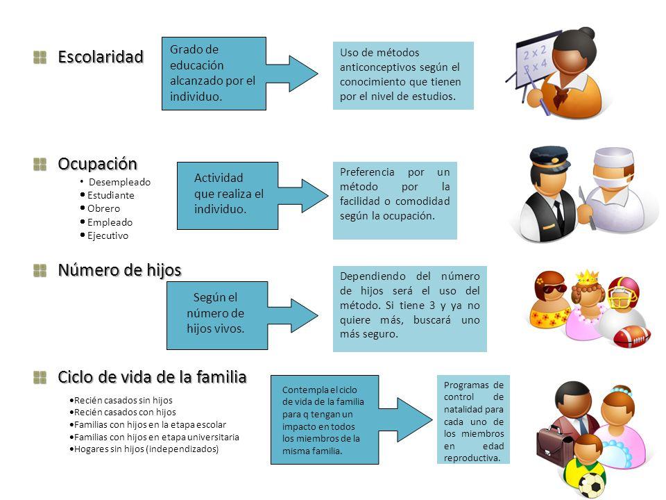 EscolaridadOcupación Número de hijos Ciclo de vida de la familia Grado de educación alcanzado por el individuo. Desempleado Estudiante Obrero Empleado