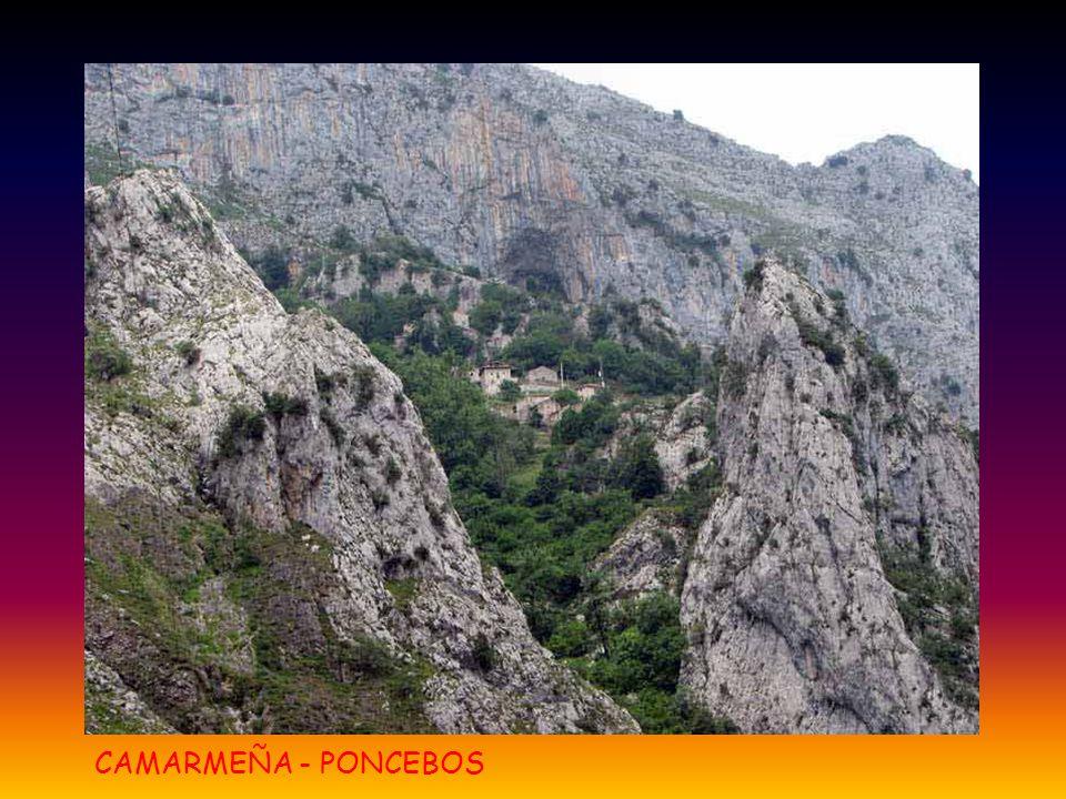CAMARMEÑA - PONCEBOS