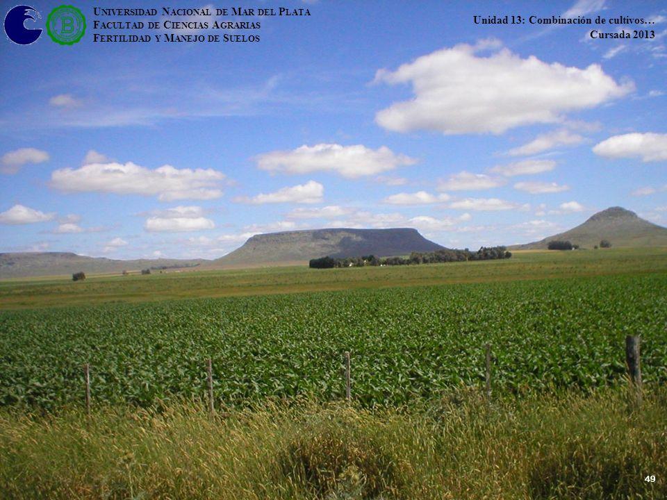 49 U NIVERSIDAD N ACIONAL DE M AR DEL P LATA F ACULTAD DE C IENCIAS A GRARIAS F ERTILIDAD Y M ANEJO DE S UELOS Unidad 13: Combinación de cultivos… Cursada 2013