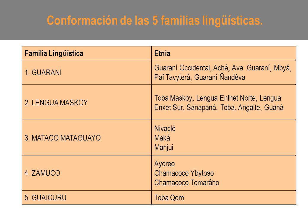 Conformación de las 5 familias lingüísticas. Familia LingüísticaEtnia 1. GUARANI Guaraní Occidental, Aché, Ava Guaraní, Mbyá, Paî Tavyterâ, Guaraní Ña